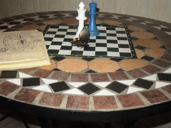 El ajedrez y la mariposa